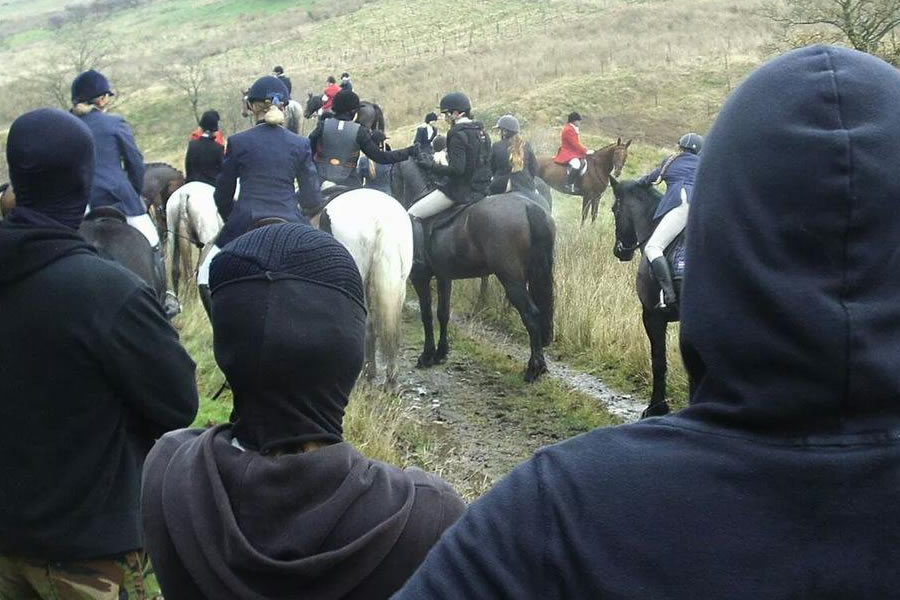 Sabbing a fox hunt